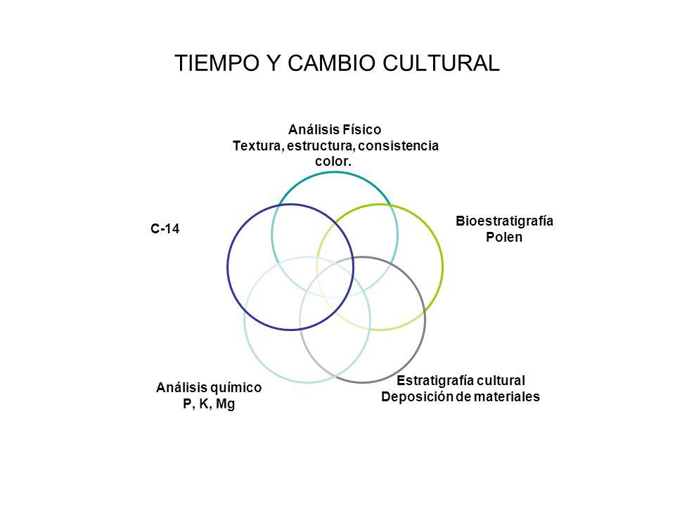 TIEMPO Y CAMBIO CULTURAL Análisis Físico Textura, estructura, consistencia color. Bioestratigrafía Polen Estratigrafía cultural Deposición de material