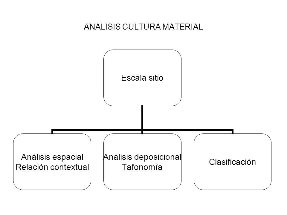 ANALISIS CULTURA MATERIAL Escala sitio Análisis espacial Relación contextual Análisis deposicional Tafonomía Clasificación