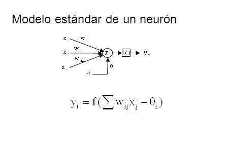 Definición de una red neuronal como un grafo Una red neuronal es un grafo dirigido con las siguiente propiedades: A cada nodo i se le asocia una variable de estado i.