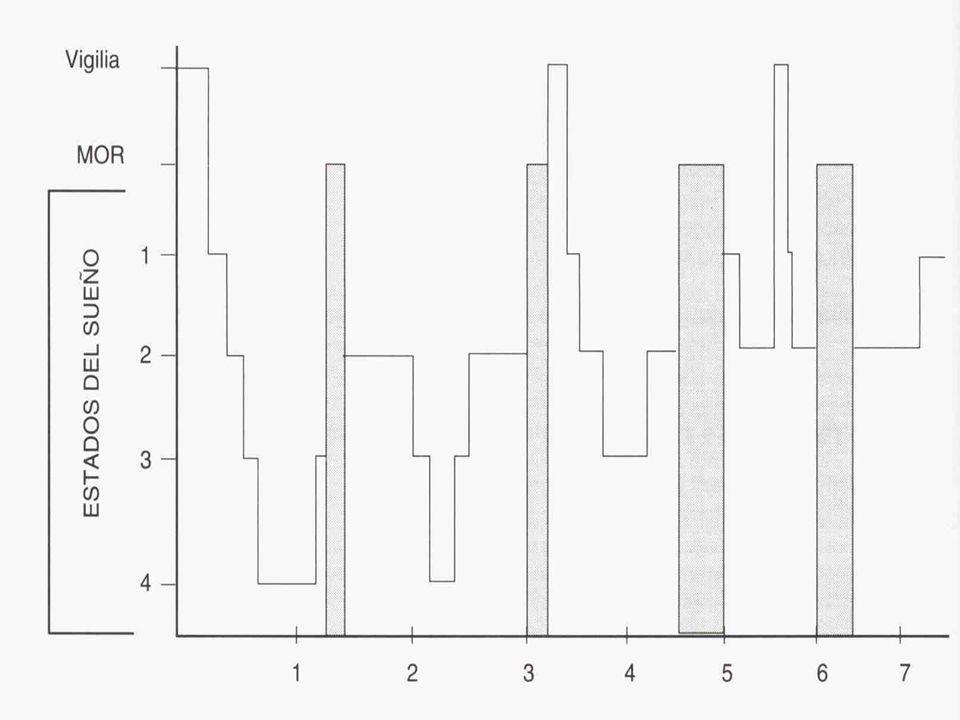 Esquizofrenia Fragmenta, invierte Disminuye: eficiencia, latencia a MOR, delta Aumenta: latencia a sueño y MOR Anorexia Fragmenta, fatiga diurna,altera eficiencia Reduce el MOR