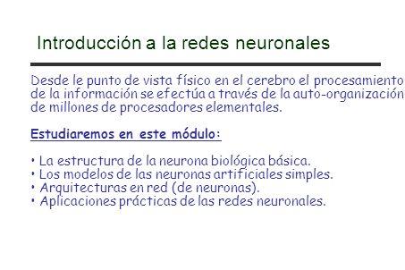 Introducción a la redes neuronales Desde le punto de vista físico en el cerebro el procesamiento de la información se efectúa a través de la auto-orga