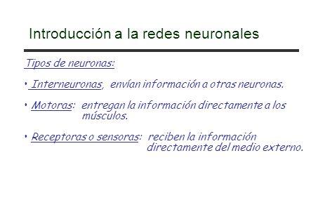 Introducción a la redes neuronales Tipos de neuronas: Interneuronas, envían información a otras neuronas. Motoras: entregan la información directament