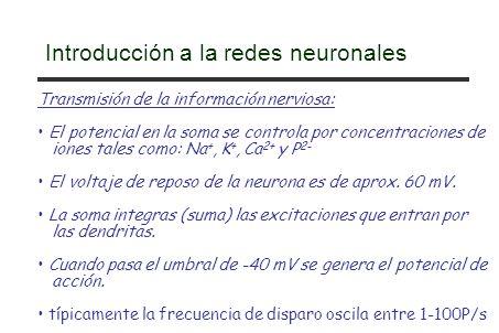Introducción a la redes neuronales Transmisión de la información nerviosa: El potencial en la soma se controla por concentraciones de iones tales como