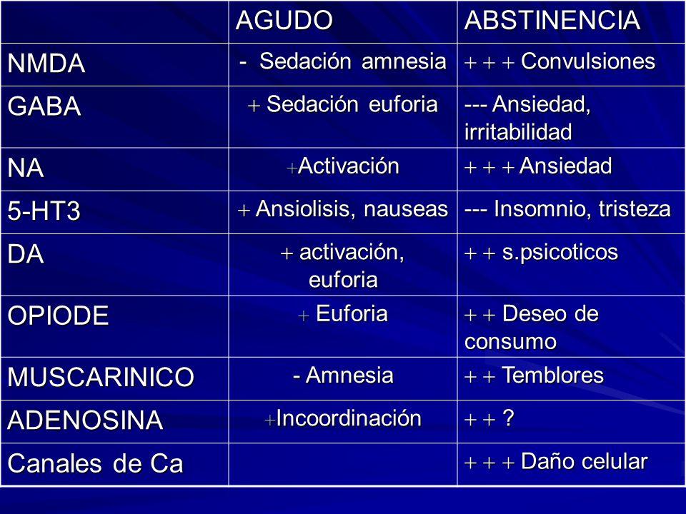 Trastornos Psicóticos Alucinosis alcoholica Delirium Tremens Trastorno Delirante Celotipia