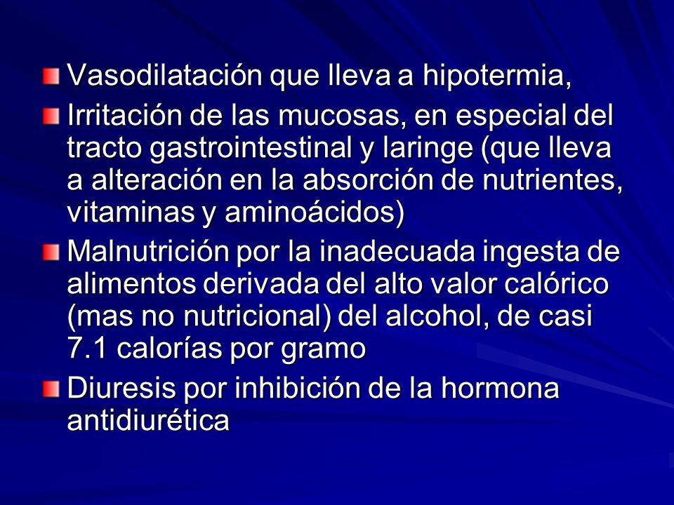 Vasodilatación que lleva a hipotermia, Irritación de las mucosas, en especial del tracto gastrointestinal y laringe (que lleva a alteración en la absorción de nutrientes, vitaminas y aminoácidos) Malnutrición por la inadecuada ingesta de alimentos derivada del alto valor calórico (mas no nutricional) del alcohol, de casi 7.1 calorías por gramo Diuresis por inhibición de la hormona antidiurética