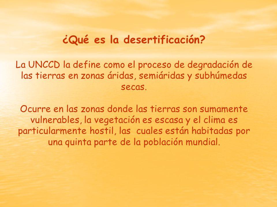 ¿Qué es la desertificación.