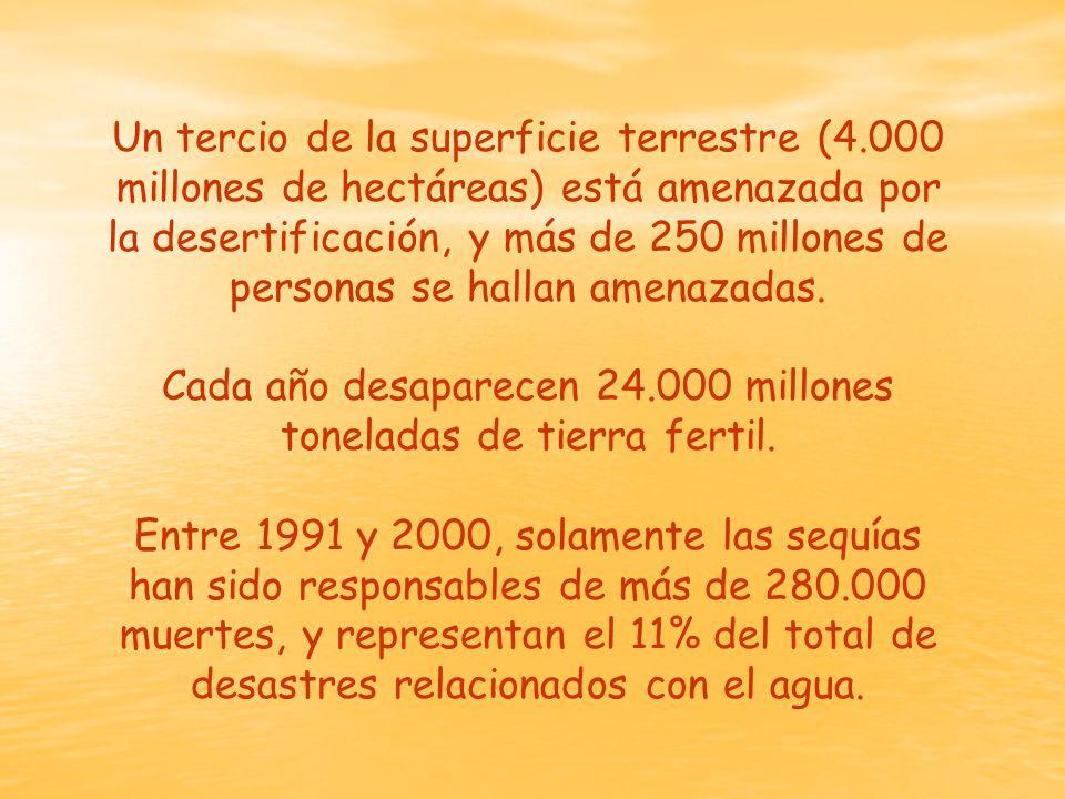 Un tercio de la superficie terrestre (4.000 millones de hectáreas) está amenazada por la desertificación, y más de 250 millones de personas se hallan amenazadas.