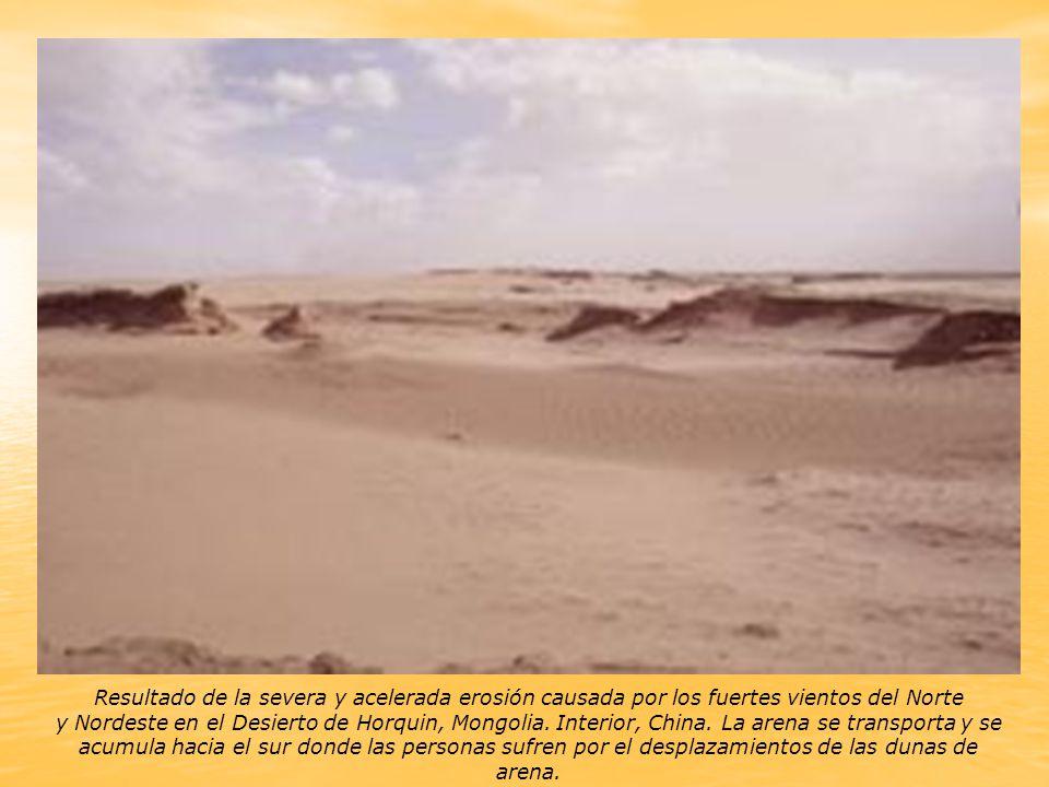 Resultado de la severa y acelerada erosión causada por los fuertes vientos del Norte y Nordeste en el Desierto de Horquin, Mongolia.