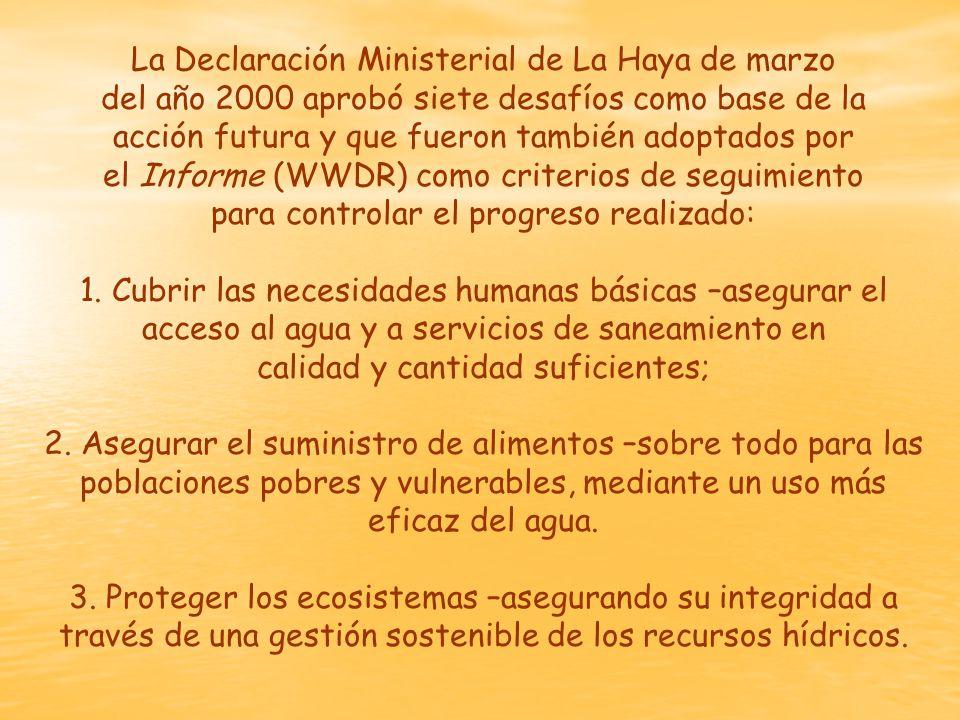 La Declaración Ministerial de La Haya de marzo del año 2000 aprobó siete desafíos como base de la acción futura y que fueron también adoptados por el Informe (WWDR) como criterios de seguimiento para controlar el progreso realizado: 1.