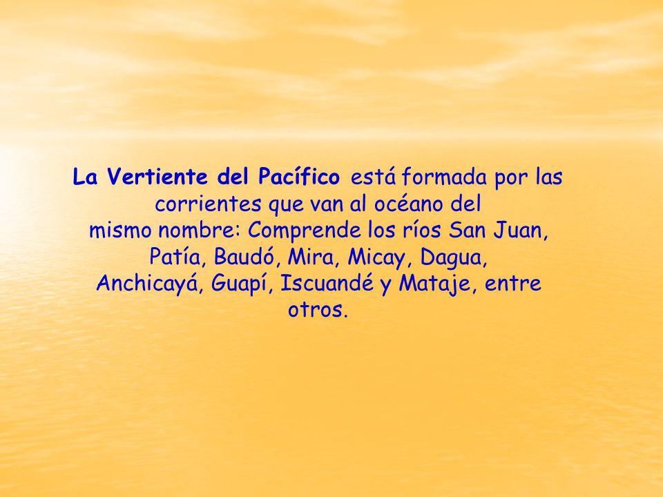 La Vertiente del Pacífico está formada por las corrientes que van al océano del mismo nombre: Comprende los ríos San Juan, Patía, Baudó, Mira, Micay, Dagua, Anchicayá, Guapí, Iscuandé y Mataje, entre otros.
