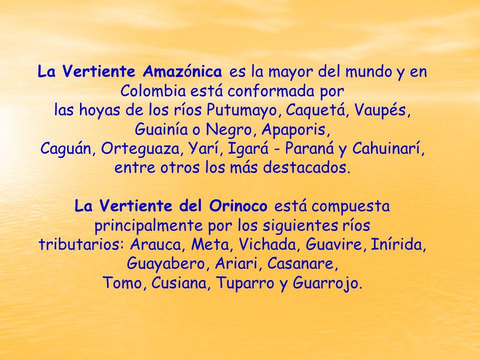La Vertiente Amazónica es la mayor del mundo y en Colombia está conformada por las hoyas de los ríos Putumayo, Caquetá, Vaupés, Guainía o Negro, Apaporis, Caguán, Orteguaza, Yarí, Igará - Paraná y Cahuinarí, entre otros los más destacados.