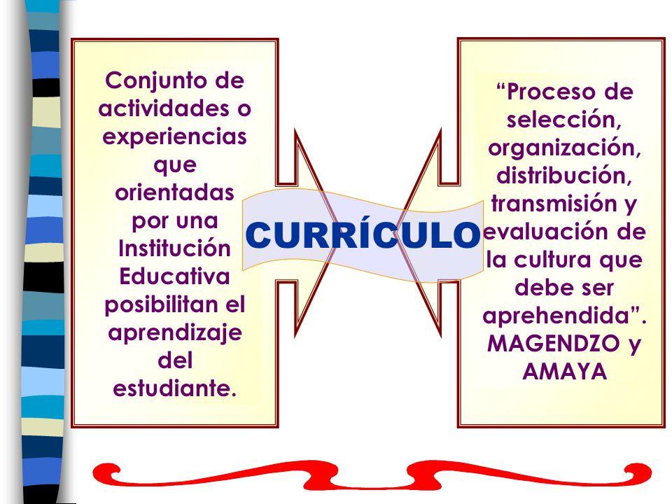 Conjunto de actividades o experiencias que orientadas por una Institución Educativa posibilitan el aprendizaje del estudiante.