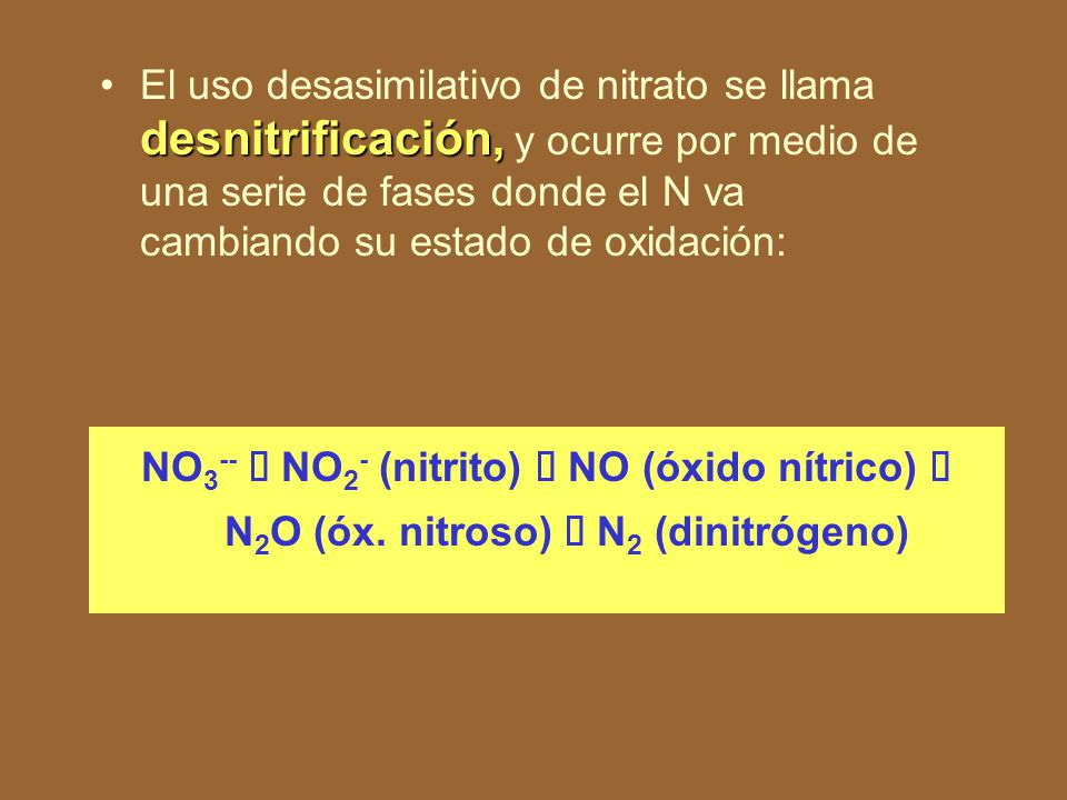 Cada grupo fisiológico de quimiolitotrofos usa un tipo de donador inorgánico: bacterias de hidrógeno (H 2 ) bacterias del hierro (Fe 2+ ) bacterias del azufre (S 2-, S 0 ).