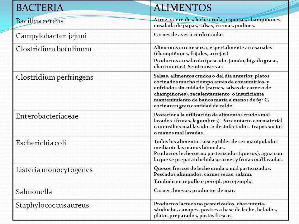 BACTERIAALIMENTOS Bacillus cereus Arroz, y cereales, leche cruda, especias, champiñones, ensalada de papas, salsas, cremas, pudines. Campylobacter jej
