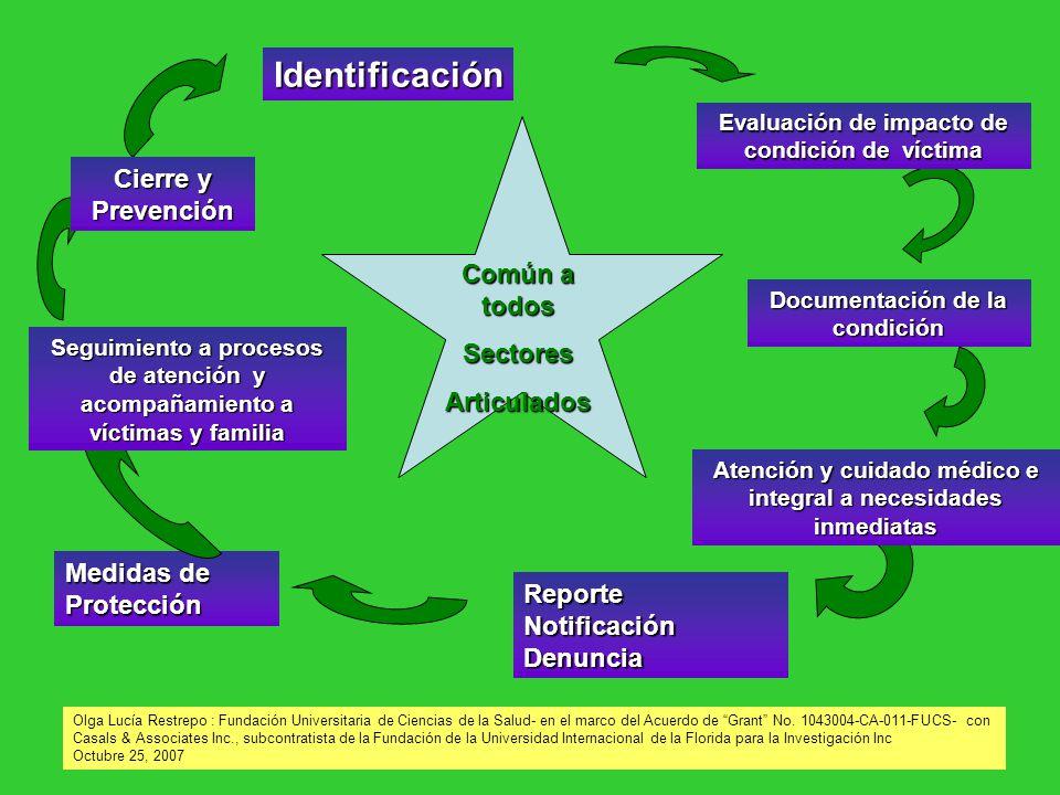 Identificación Reporte Notificación Denuncia Atención y cuidado médico e integral a necesidades inmediatas Documentación de la condición Evaluación de
