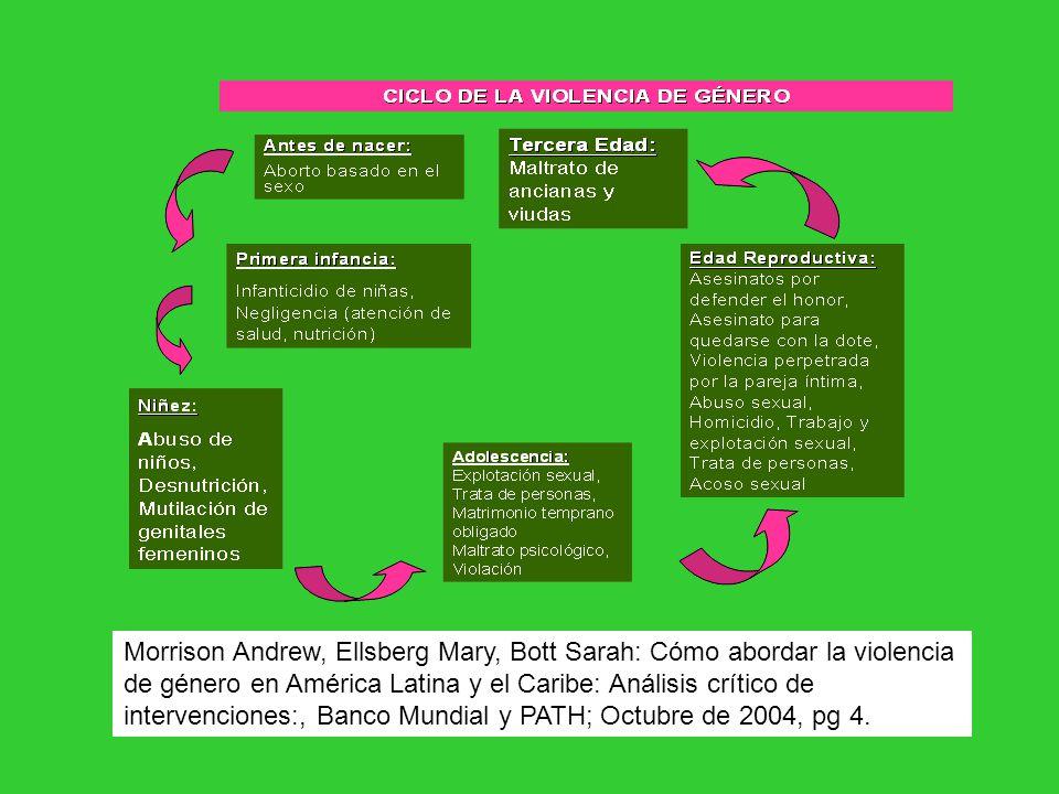 Morrison Andrew, Ellsberg Mary, Bott Sarah: Cómo abordar la violencia de género en América Latina y el Caribe: Análisis crítico de intervenciones:, Ba