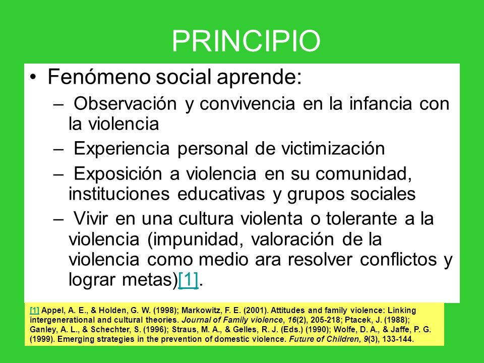 Fenómeno social aprende: – Observación y convivencia en la infancia con la violencia – Experiencia personal de victimización – Exposición a violencia en su comunidad, instituciones educativas y grupos sociales – Vivir en una cultura violenta o tolerante a la violencia (impunidad, valoración de la violencia como medio ara resolver conflictos y lograr metas)[1].[1] PRINCIPIO [1][1] Appel, A.