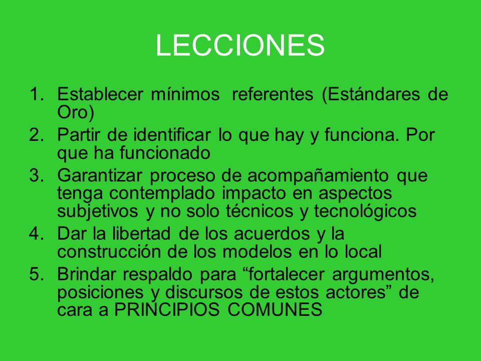 LECCIONES 1.Establecer mínimos referentes (Estándares de Oro) 2.Partir de identificar lo que hay y funciona.