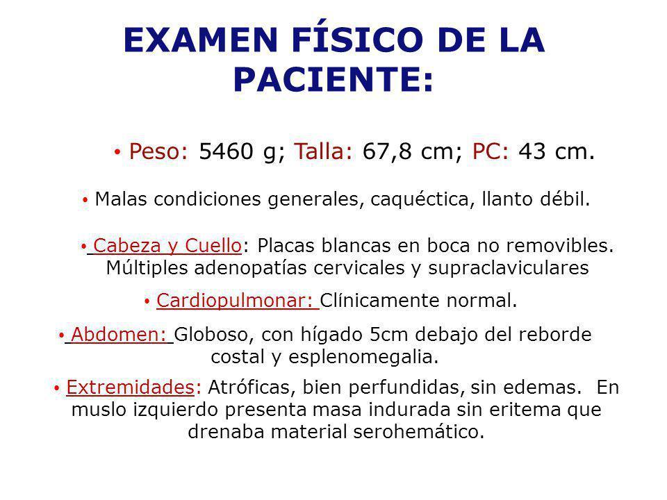EXAMEN FÍSICO DE LA PACIENTE: Peso: 5460 g; Talla: 67,8 cm; PC: 43 cm. Malas condiciones generales, caquéctica, llanto débil. Cardiopulmonar: Cl í nic