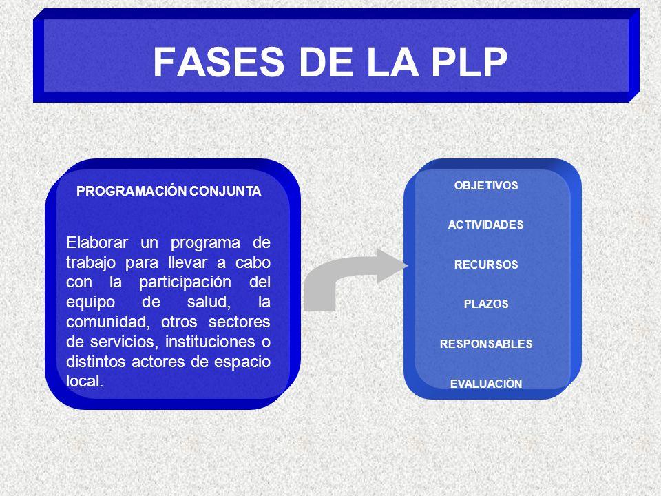 FASES DE LA PLP PROGRAMACIÓN CONJUNTA Elaborar un programa de trabajo para llevar a cabo con la participación del equipo de salud, la comunidad, otros sectores de servicios, instituciones o distintos actores de espacio local.