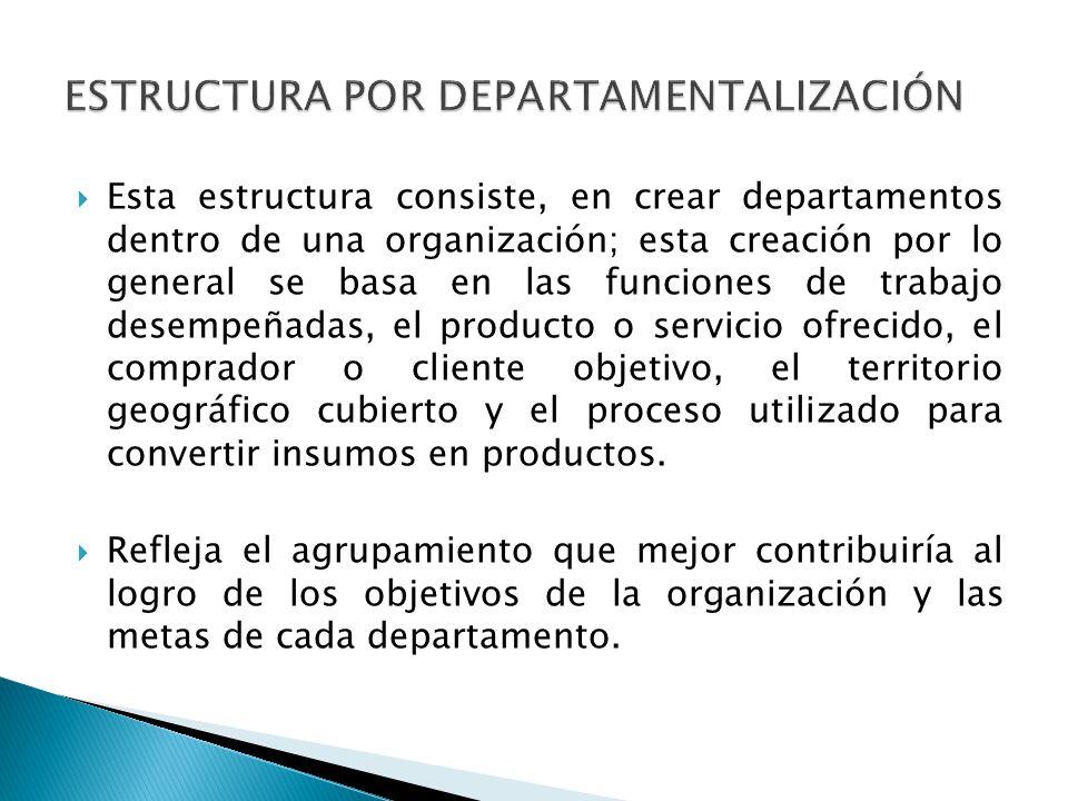 Esta estructura consiste, en crear departamentos dentro de una organización; esta creación por lo general se basa en las funciones de trabajo desempeñ