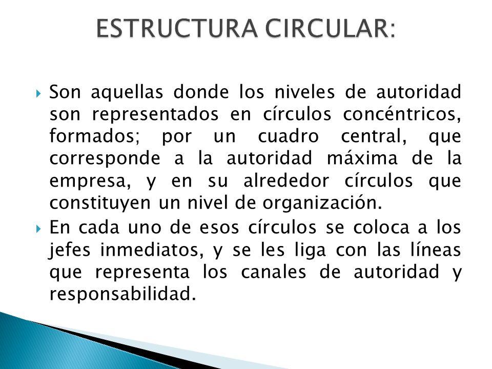 Son aquellas donde los niveles de autoridad son representados en círculos concéntricos, formados; por un cuadro central, que corresponde a la autoridad máxima de la empresa, y en su alrededor círculos que constituyen un nivel de organización.