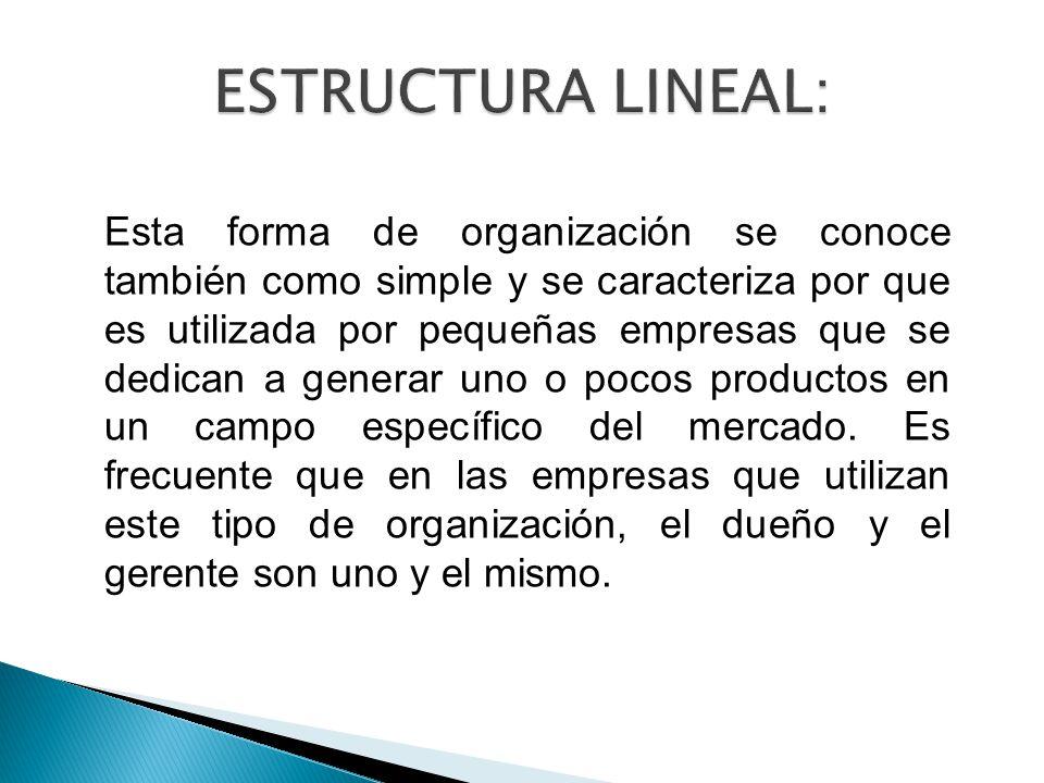 Esta forma de organización se conoce también como simple y se caracteriza por que es utilizada por pequeñas empresas que se dedican a generar uno o pocos productos en un campo específico del mercado.