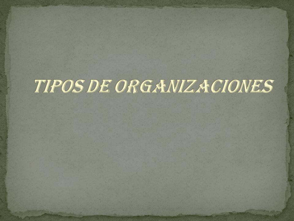 Cooperativas Fondos de empleados Asociaciones mutuales Cooperativas Pre cooperativas Ley 79 de 1988 Ley 454 de 1998 Características: No distribuyen excedentes