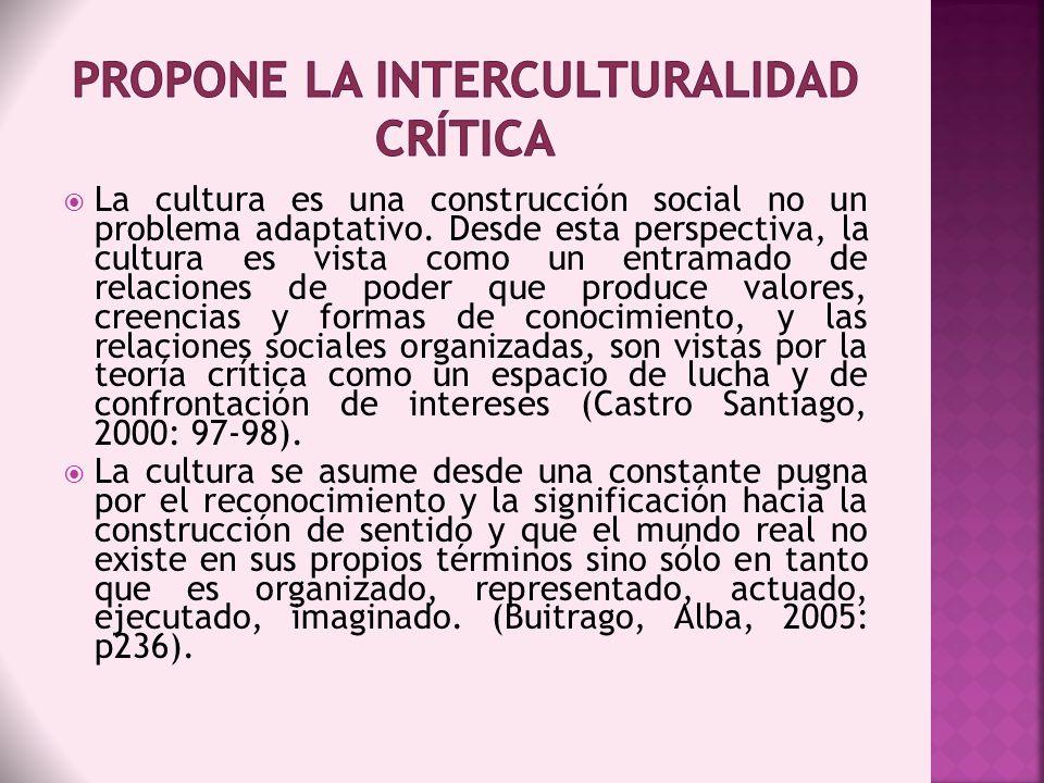 La cultura es una construcción social no un problema adaptativo. Desde esta perspectiva, la cultura es vista como un entramado de relaciones de poder