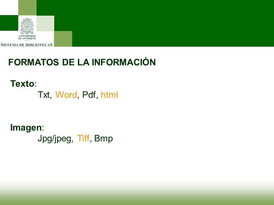 FORMATOS DE LA INFORMACIÓN Texto: Txt, Word, Pdf, html Imagen: Jpg/jpeg, Tiff, Bmp