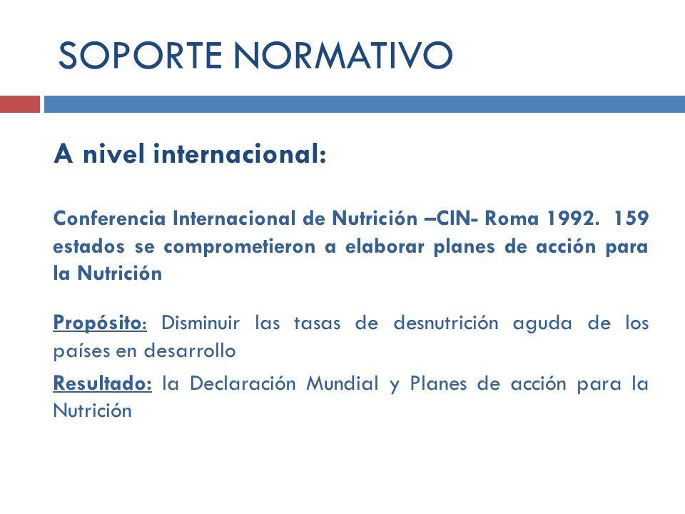 A nivel internacional: Conferencia Internacional de Nutrición –CIN- Roma 1992. 159 estados se comprometieron a elaborar planes de acción para la Nutri