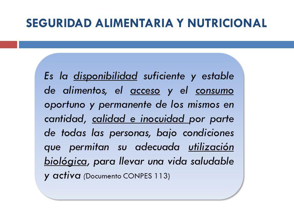 SEGURIDAD ALIMENTARIA Y NUTRICIONAL Es la disponibilidad suficiente y estable de alimentos, el acceso y el consumo oportuno y permanente de los mismos