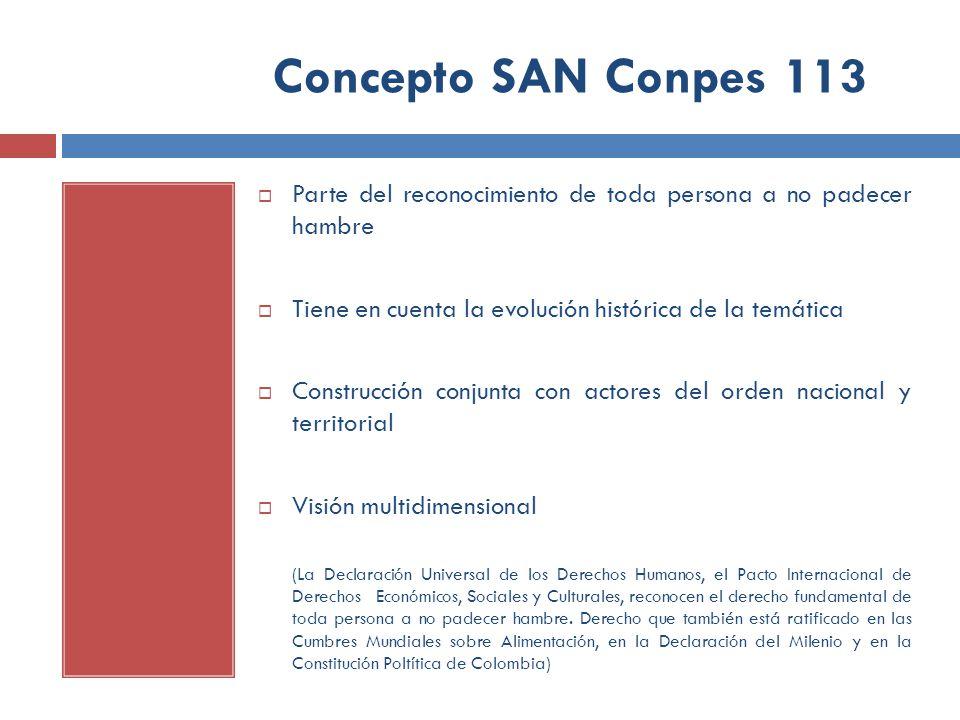 Concepto SAN Conpes 113 Parte del reconocimiento de toda persona a no padecer hambre Tiene en cuenta la evolución histórica de la temática Construcció