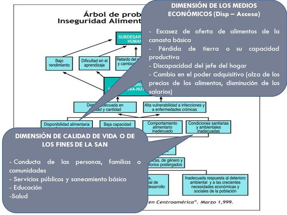 DIMENSIÓN DE LOS MEDIOS ECONÓMICOS (Disp – Acceso) - Escasez de oferta de alimentos de la canasta básica - Pérdida de tierra o su capacidad productiva