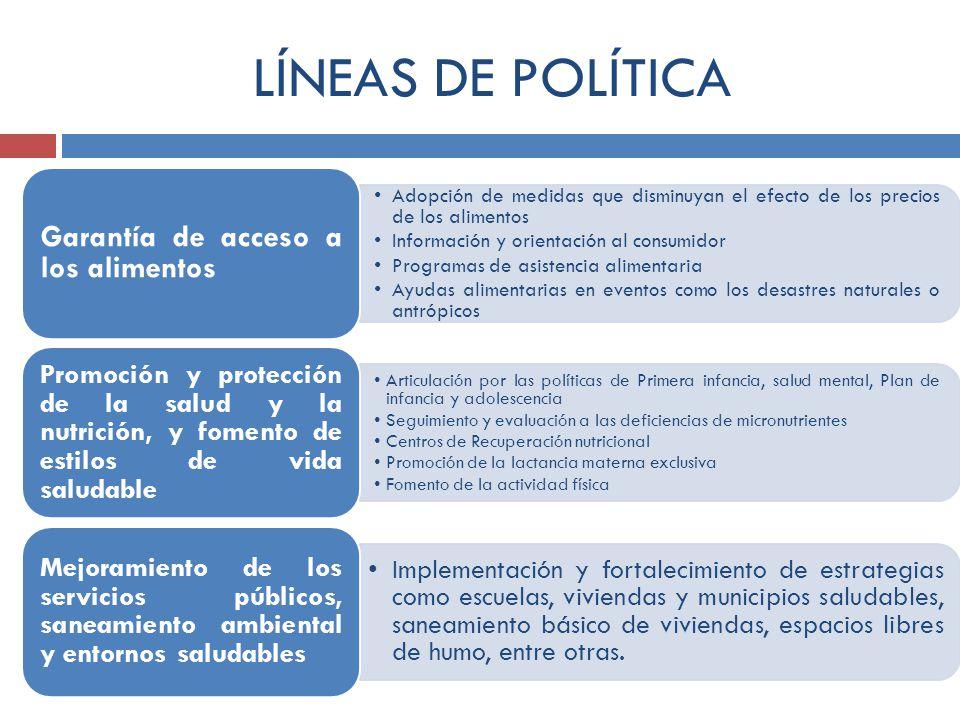 LÍNEAS DE POLÍTICA Adopción de medidas que disminuyan el efecto de los precios de los alimentos Información y orientación al consumidor Programas de a