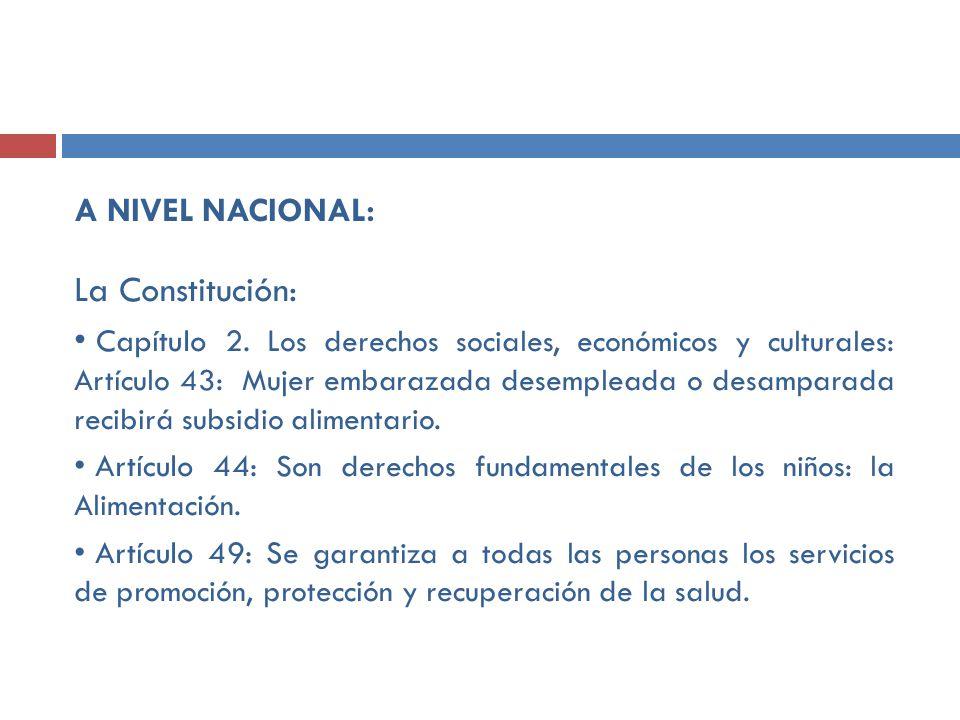 A NIVEL NACIONAL: La Constitución: Capítulo 2. L os derechos sociales, económicos y culturales: Artículo 43: Mujer embarazada desempleada o desamparad