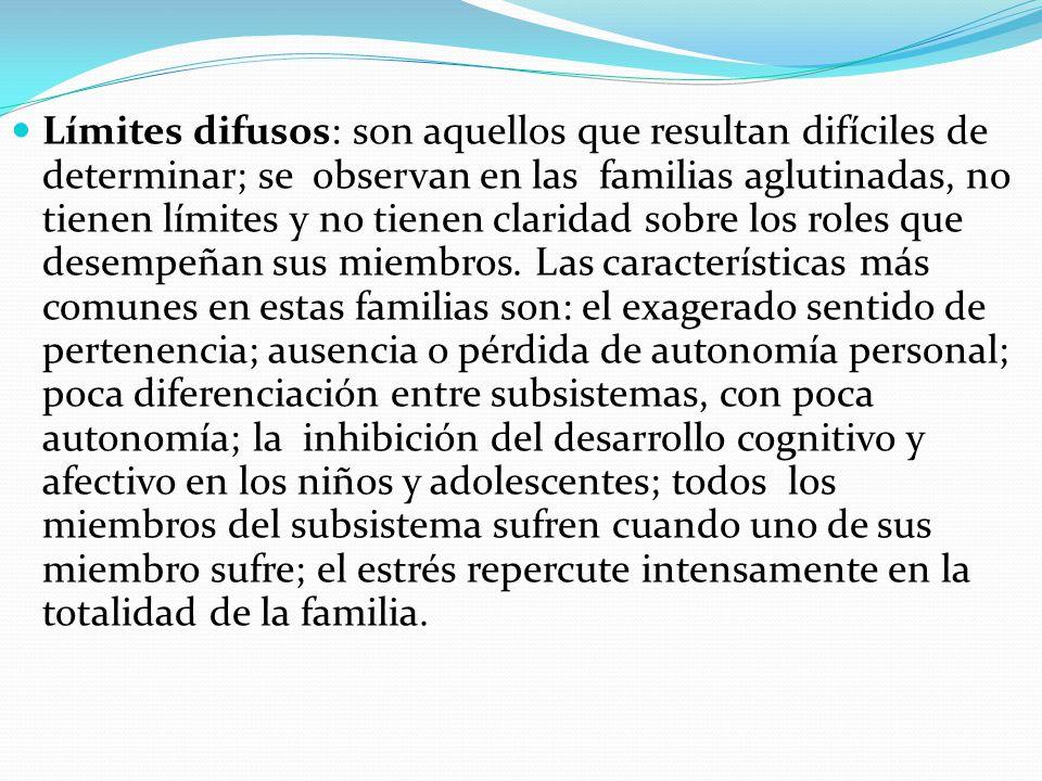 Limites pueden ser: Límites difusos: son aquellos que resultan difíciles de determinar; se observan en las familias aglutinadas, no tienen límites y n