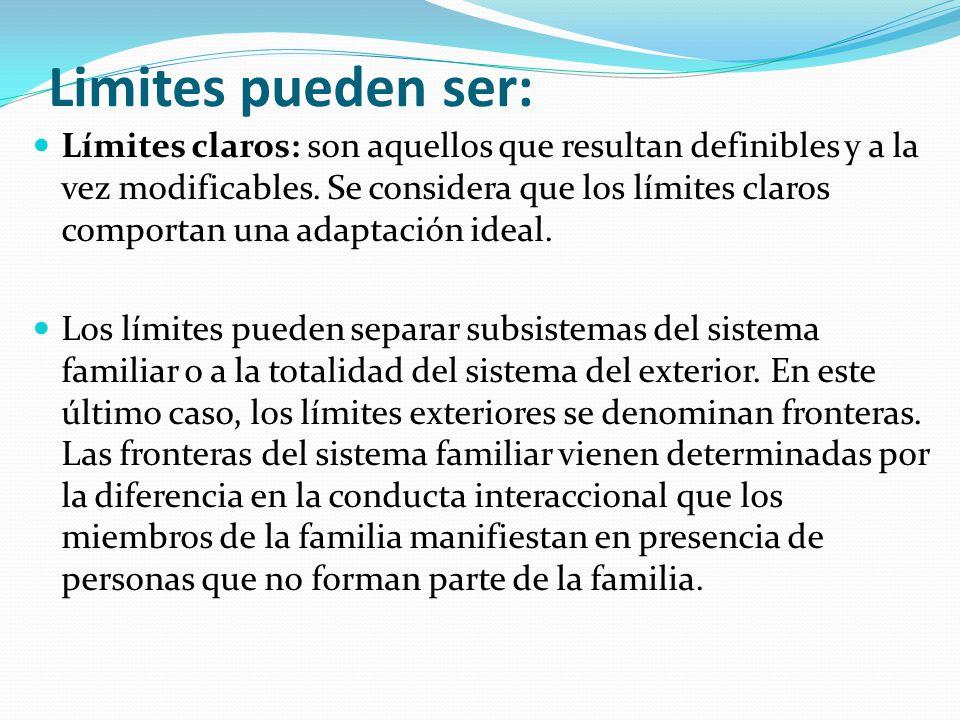 Limites pueden ser: Límites claros: son aquellos que resultan definibles y a la vez modificables. Se considera que los límites claros comportan una ad