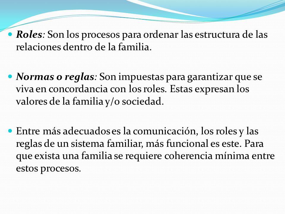 Roles: Son los procesos para ordenar las estructura de las relaciones dentro de la familia. Normas o reglas: Son impuestas para garantizar que se viva