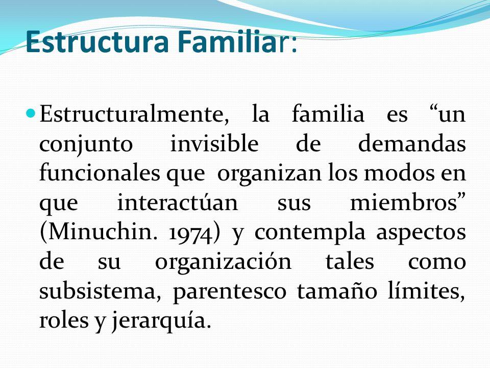Estructura Familiar: Estructuralmente, la familia es un conjunto invisible de demandas funcionales que organizan los modos en que interactúan sus miem