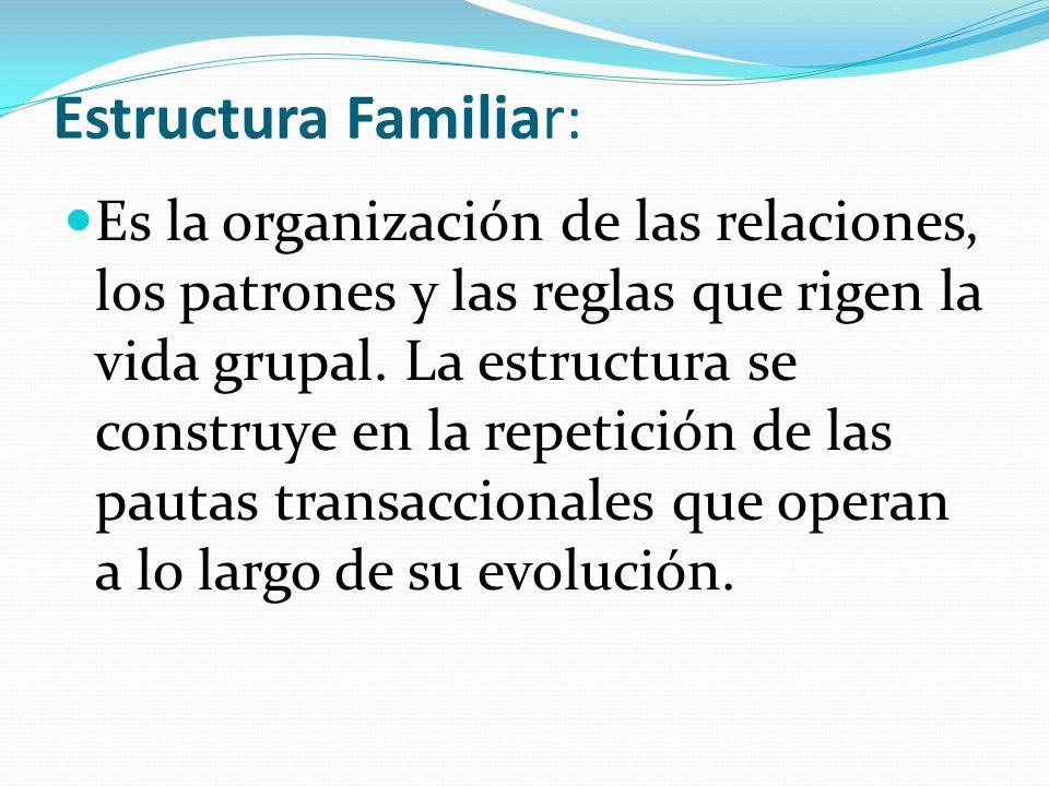 Estructura Familiar: Es la organización de las relaciones, los patrones y las reglas que rigen la vida grupal. La estructura se construye en la repeti