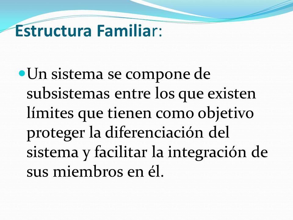 Estructura Familiar: Un sistema se compone de subsistemas entre los que existen límites que tienen como objetivo proteger la diferenciación del sistem