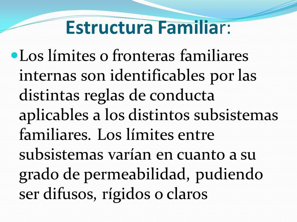 ESTRUCTURA FAMILIAR La estructura que hace referencia a la organización o configuración de las relaciones, composición, jerarquía, límites, roles, subsistemas, entre otros Formación de la pareja, tamaño, personas incluidas, parentesco, organización de relaciones: límites, jerarquías, autoridad.