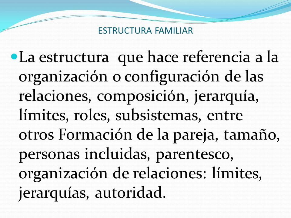 ESTRUCTURA FAMILIAR La estructura que hace referencia a la organización o configuración de las relaciones, composición, jerarquía, límites, roles, sub