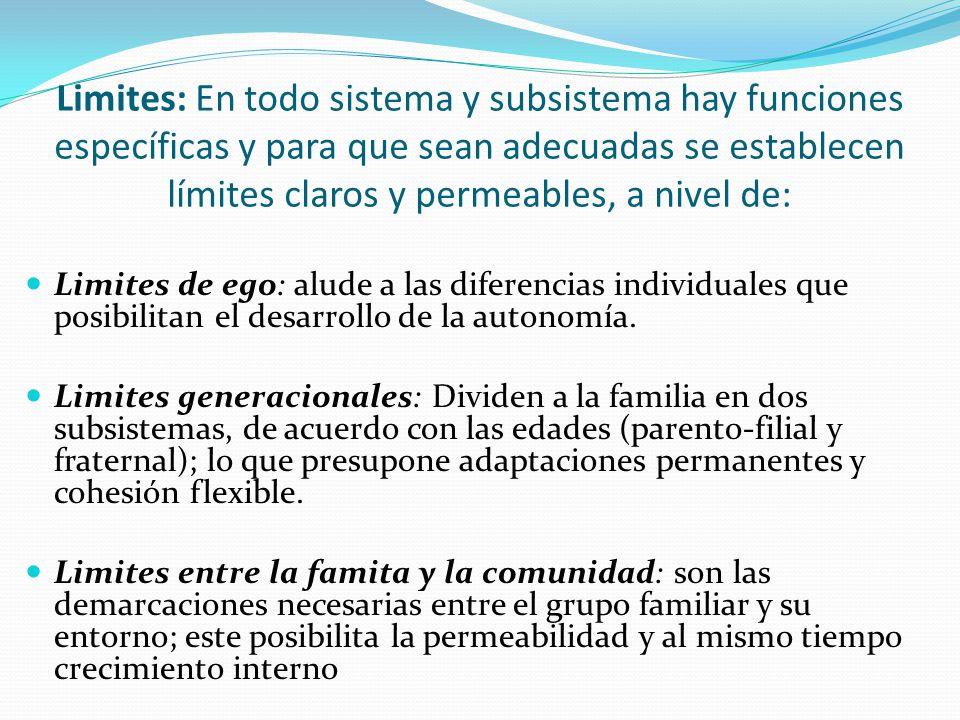 Limites pueden ser: Límites difusos: son aquellos que resultan difíciles de determinar; se observan en las familias aglutinadas, no tienen límites y no tienen claridad sobre los roles que desempeñan sus miembros.