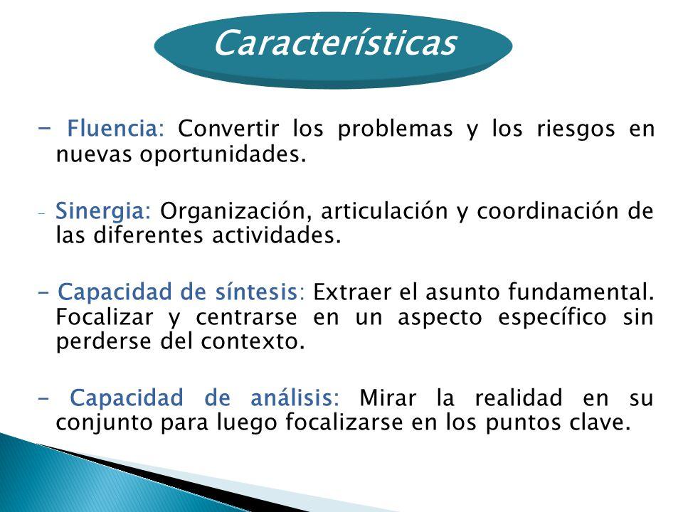 - Fluencia: Convertir los problemas y los riesgos en nuevas oportunidades. - Sinergia: Organización, articulación y coordinación de las diferentes act