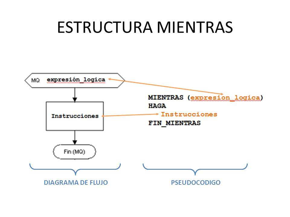 ESTRUCTURA MIENTRAS DIAGRAMA DE FLUJOPSEUDOCODIGO