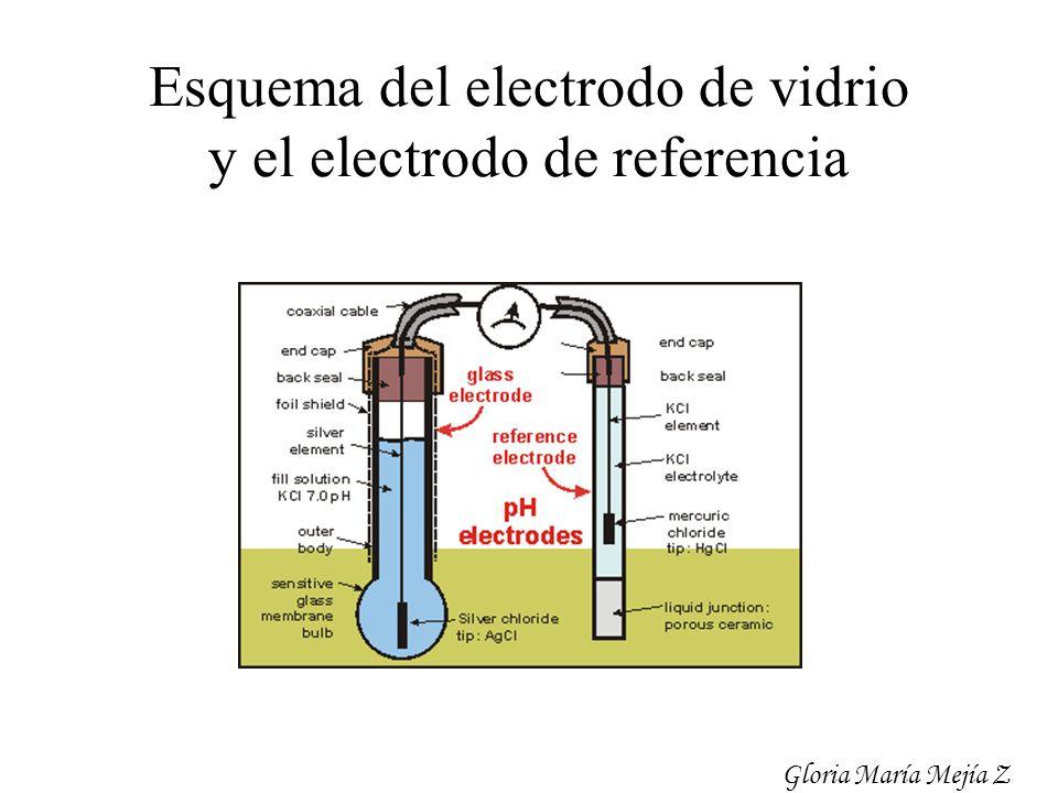 Esquema del electrodo de vidrio y el electrodo de referencia Gloria María Mejía Z
