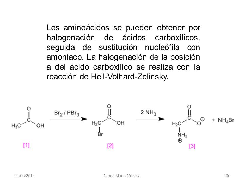 11/06/2014 Gloria Maria Mejia Z. 105 Los aminoácidos se pueden obtener por halogenación de ácidos carboxílicos, seguida de sustitución nucleófila con