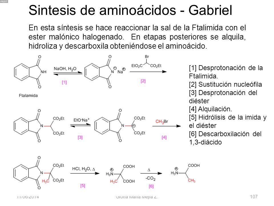 11/06/2014 Gloria Maria Mejia Z. 107 Sintesis de aminoácidos - Gabriel En esta síntesis se hace reaccionar la sal de la Ftalimida con el ester malónic